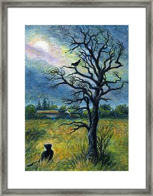 Moonlight Prowl Framed Print
