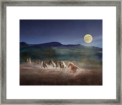 Moonlight Run Framed Print