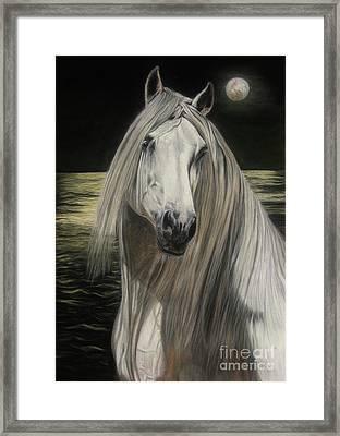 Moonlight Framed Print by Sabine Lackner