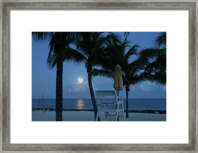 Moonlight Serenade Framed Print by Angie Bechanan