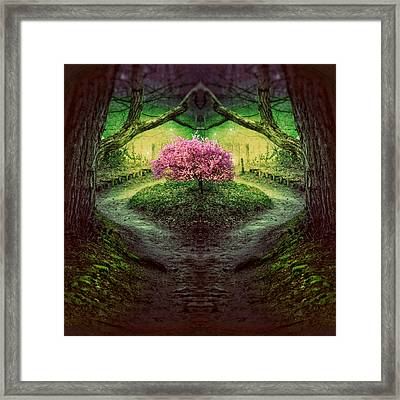 Moonlight Serenade Framed Print by Studio Yuki