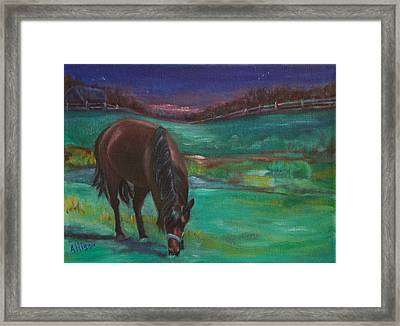 Moonlight Snack Framed Print by Stephanie Allison