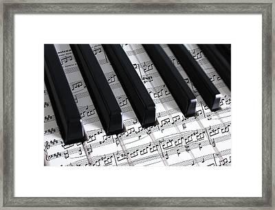 Moonlight Sonata Framed Print by Iryna Goodall