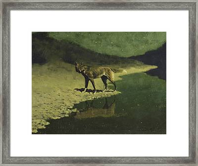 Moonlight, Wolf Framed Print