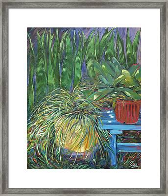 Moonlit Garden Framed Print by Karen Doyle