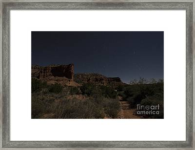 Moonlit Path Framed Print by Melany Sarafis