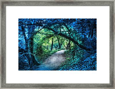 Moonlit Walk Framed Print by Debra and Dave Vanderlaan