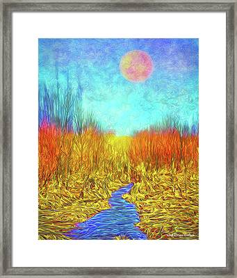 Moonlit Wilderness - Colorado Stream In Boulder County Framed Print
