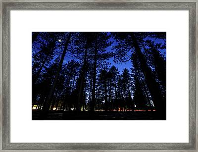 Moonrise In The Woods Framed Print