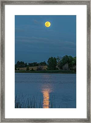 Moonrise Reflection Vertical Framed Print by Marc Crumpler