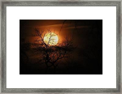 Moonrise Silhouette Framed Print by John Ohm