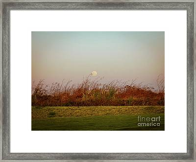 Moonscape Evening Shades Framed Print
