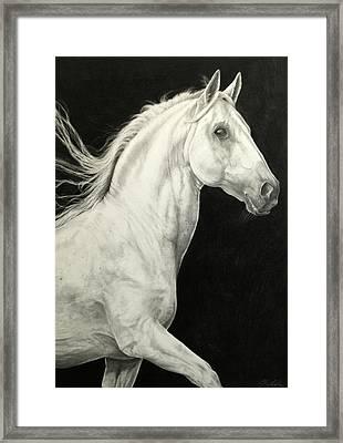 Moonshine Framed Print by Brenda Gordon