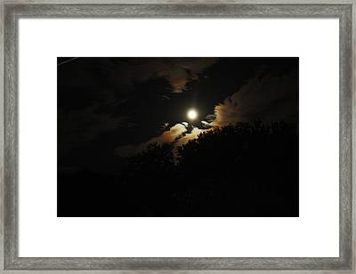 Moonshine Framed Print by Paula Coley