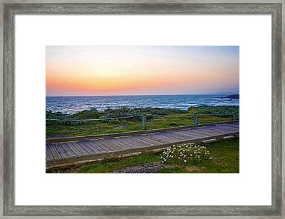 Moonstone Beach Boardwalk Framed Print by Lynn Bauer