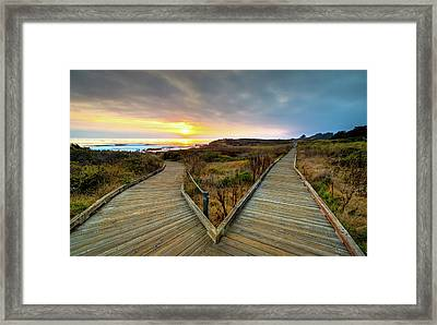 Moonstone Beach Path Framed Print