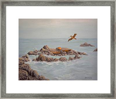 Moonstone Beach Tidepool Framed Print