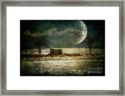 Moonstruck Framed Print by Lois Bryan