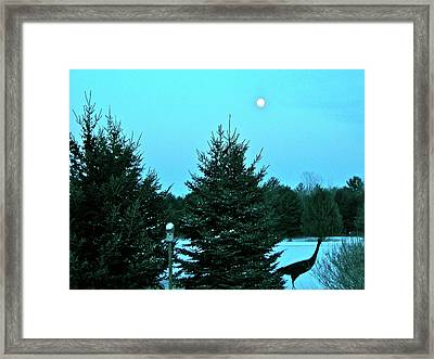 Framed Print featuring the photograph Moony Blue by Randy Rosenberger