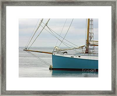 Moored Framed Print by Michael Petrizzo