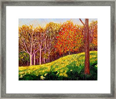 Mooresville October Framed Print by Stan Hamilton
