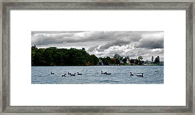 Moose Beach Point Framed Print