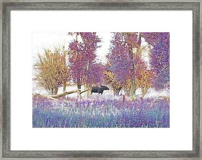 Moose In Pink Forest Framed Print by Jennie Marie Schell