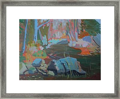 Moose Lips Brook Framed Print