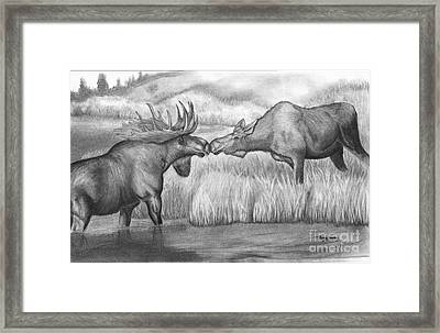 Moose Looking For Love Framed Print by Russ  Smith