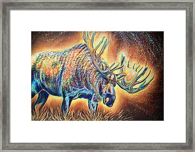 Moose Madness Framed Print by Teshia Art