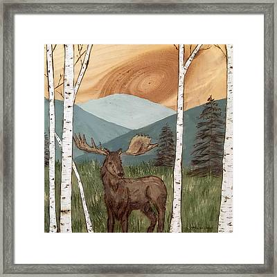 Moose Of The White Birch Forest Framed Print by Kerri Provost