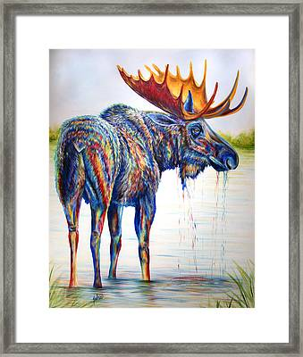 Moose Sighting Framed Print
