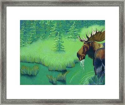 Moose Framed Print by Tracy L Teeter