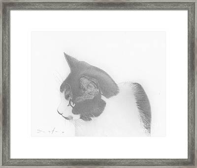 Moozie Cat Drawing Framed Print