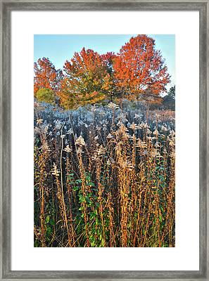 Framed Print featuring the photograph Moraine Hills Fall Colors by Ray Mathis