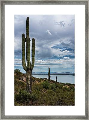 Framed Print featuring the photograph More Beauty Of The Southwest  by Saija Lehtonen