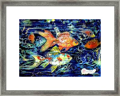 More Gold Fish Framed Print by Norma Boeckler