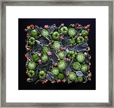More Green Tomato Art Framed Print