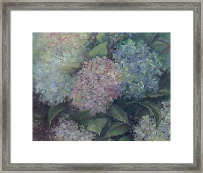 More Hydrangeas Framed Print