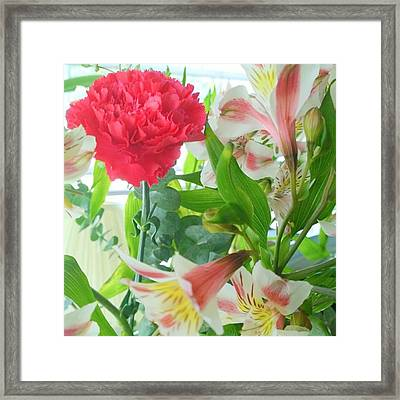 More #spring #flowers? Yes, Please ! Framed Print