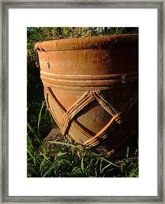 More Than A Planter Framed Print by Ali Dover