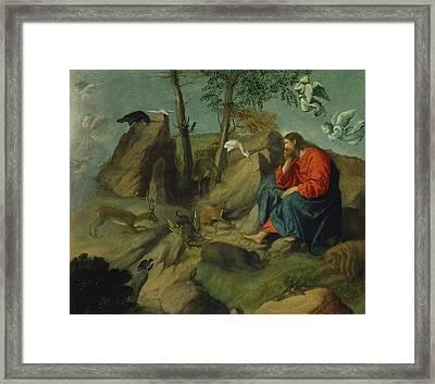 Moretto Da Brescia Framed Print