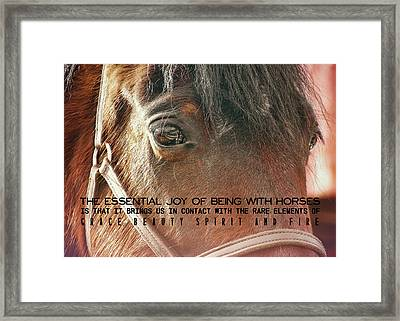 Morgan Horse Quote Framed Print by JAMART Photography