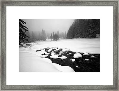 Morn In White Framed Print