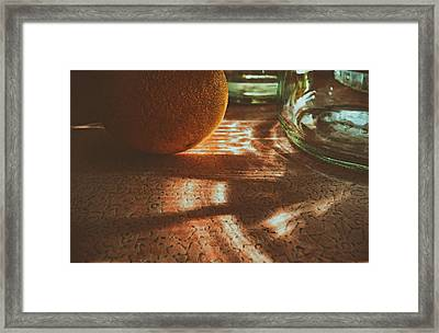 Framed Print featuring the photograph Morning Detail by Steven Huszar