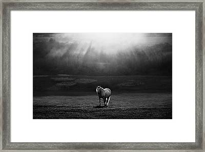 Morning Appearance Framed Print by Peter Svoboda