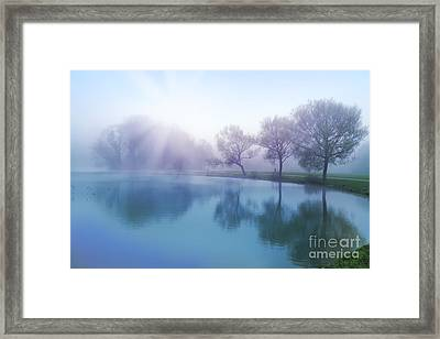 Framed Print featuring the photograph Morning by Ariadna De Raadt