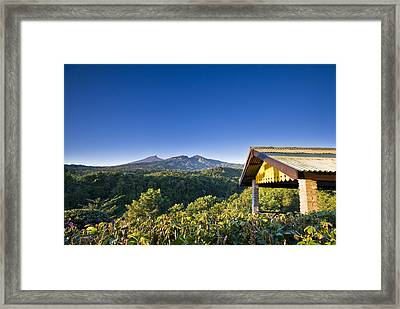 Morning At Countryside Framed Print by Ng Hock How