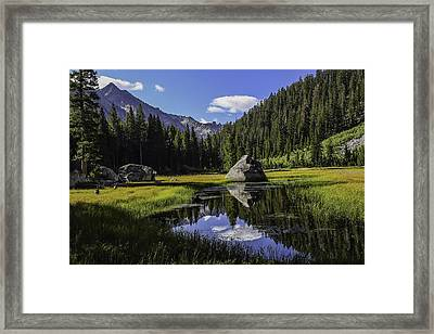 Morning At Grouse Meadow Framed Print