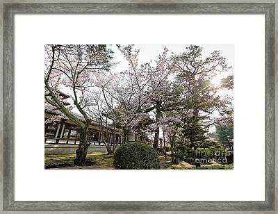 Morning At Horyu-ji Temple Framed Print by Rhonda Krause